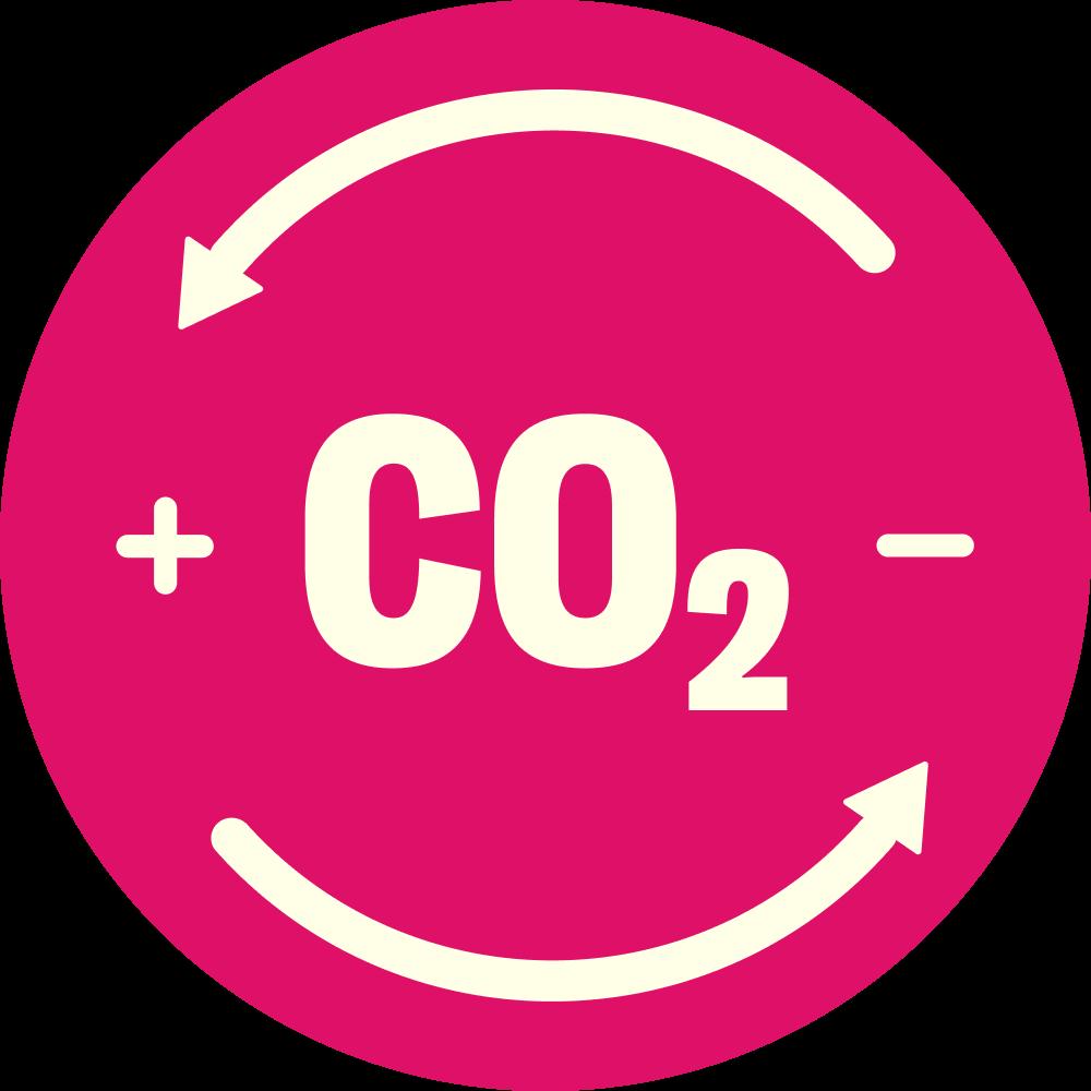 CO2 neutrale Lieferung